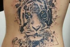 tigre-géometric