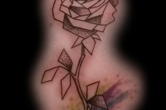 rose-geometric-aquarelle